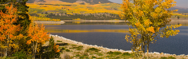 Image of fall trees in front of lake on Coppertree Counseling website of Grier Cundill